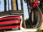 Rallymaster81